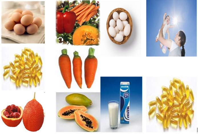 Figure 34.1 Food sources of vitamins A and D